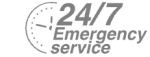 24/7 Emergency Service Pest Control in Hammersmith, W6. Call Now! 020 8166 9746